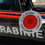 Lago di Bracciano: controlli dell'Arma. Bilancio: 2 arresti, 8 denunce e multe a due maneggi