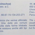 Bracciano Sulla Collezione Panunzi Elena Felluca replica al professor Paci sulla localizzazione dell'antica Forum Clodii