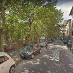 Bracciano: la scure di Tondinelli su 4 alberi di Viale Odescalchi. Il 26 settembre l'esecuzione