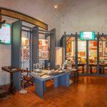 Italia Nostra Lazio: Le firme di quattordicimila studenti e di duemila docenti per il Museo Didattico del Libro Antico